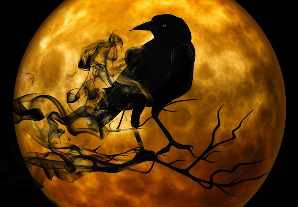 Halloween Themed Cruise